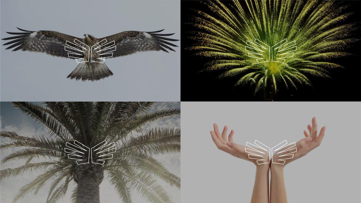 沙特奥委会SaudiSport视觉形象